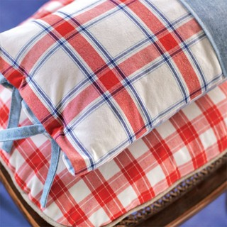 Small product bramley red and blue fb cushion detail med